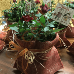 Sant Jordi detalls flors, Naturmura